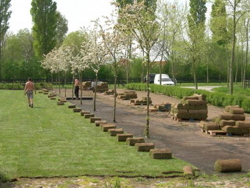 leveren en plaatsen grasmatten